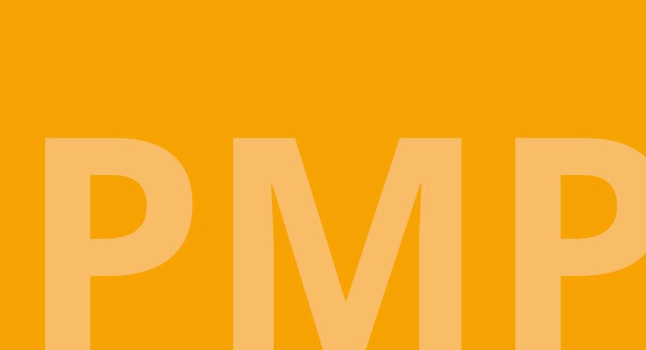 PMP - Curriculum Psychoonkologie
